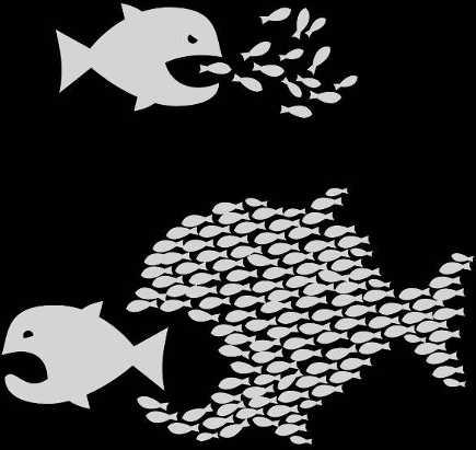 pez-grande-pez-chico