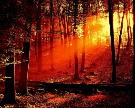 amanecer-rojo