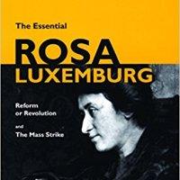 ¿Revolución o transformación? Ya lo contestó Rosa (y segunda parte)