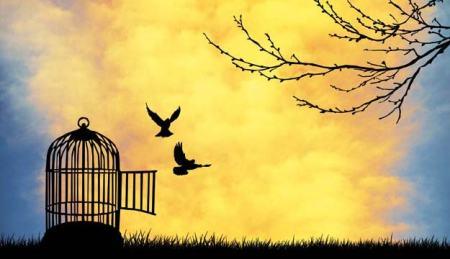 Libertad-verdadera-la-liberación-del-alma